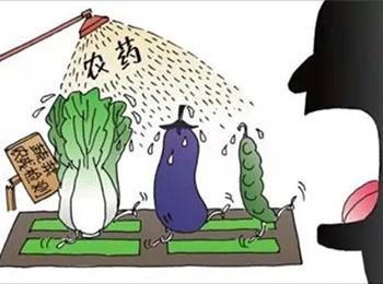 几乎无人提及的农药可怕之处!你真的了解吗!