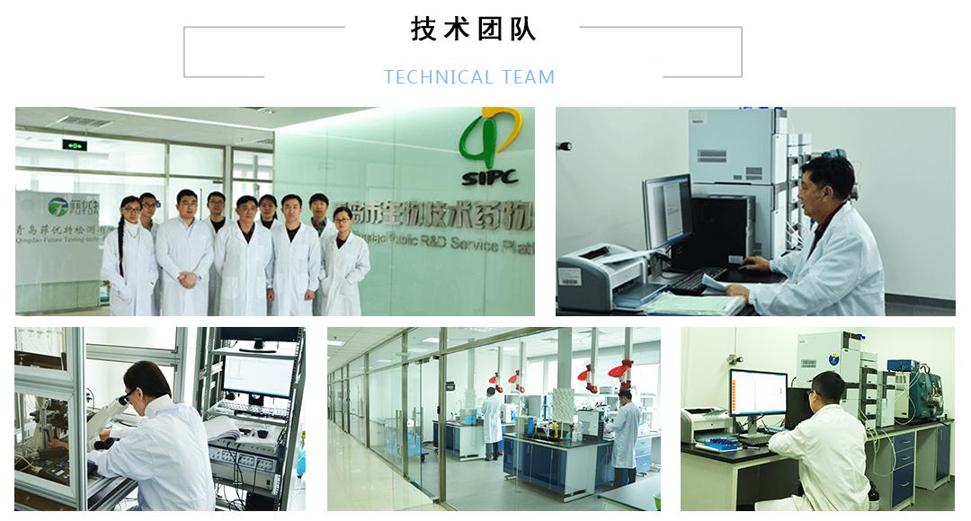 免疫组化实验技术服务