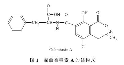 赭曲霉毒素A检测