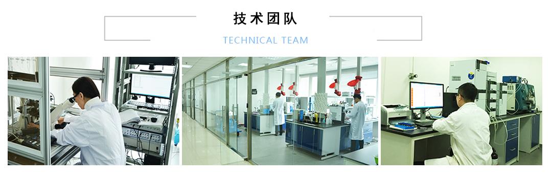 技术团队展示
