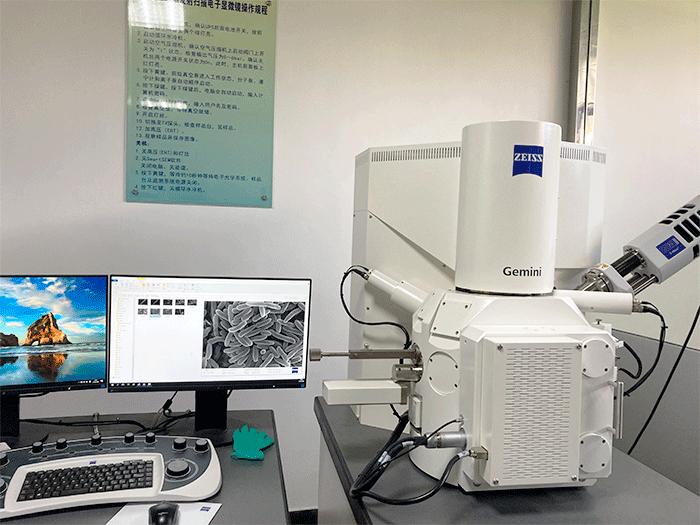 场发射扫描电子显微镜(FESEM)